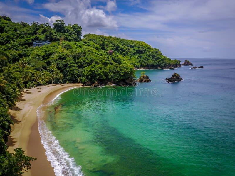 Изумительный вид с воздуха тропического пляжа, пальмы морской птицы, голубое небо, штиль на море, красивый день стоковые изображения
