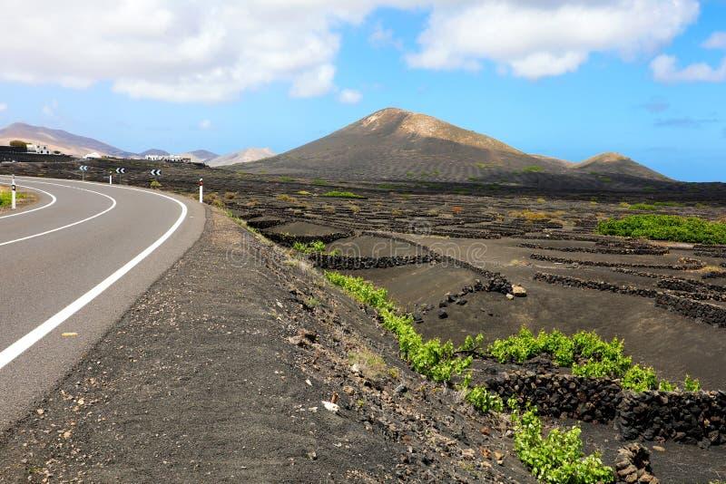 Изумительный ландшафт острова Лансароте с вулканической черной землей с виноградниками Ла Geria, Канарских островов, Испании стоковые фотографии rf