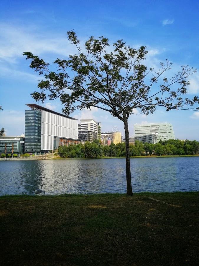 Изумительный панорамный вид на красивые пейзажи на берегу озера на берегу озера Ayer8 Lakeside Putrajaya Понятия природы и окружа стоковые фотографии rf