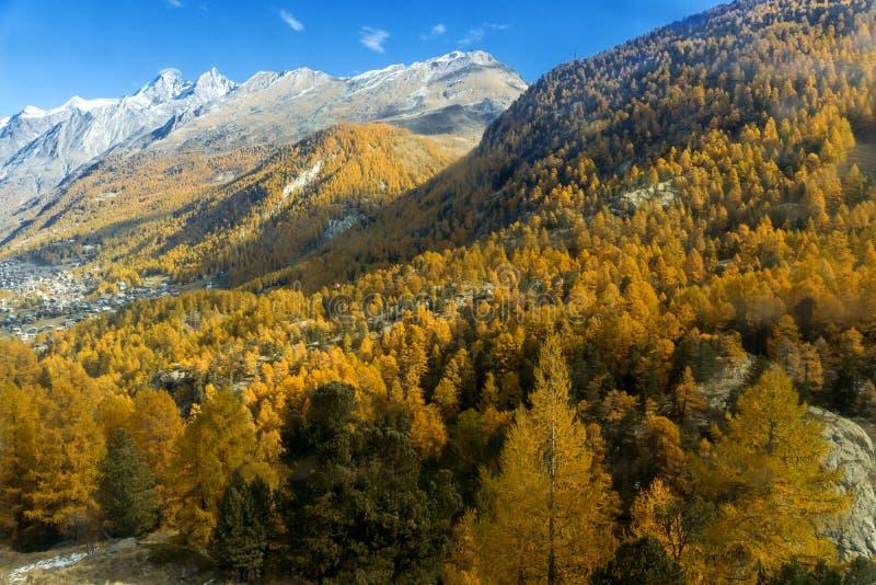 Изумительная панорама около Zermatt, кантон осени Вале, Швейцарии стоковые фотографии rf