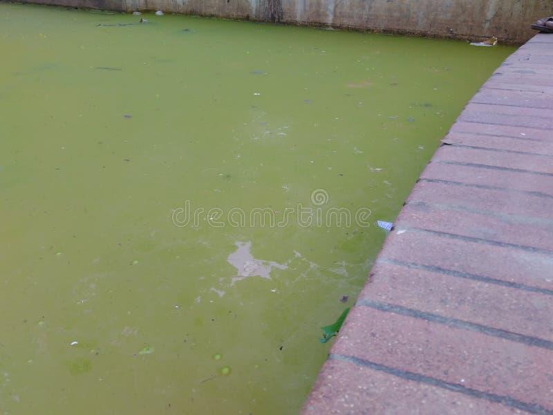 Изумительное зеленое озеро стоковая фотография rf