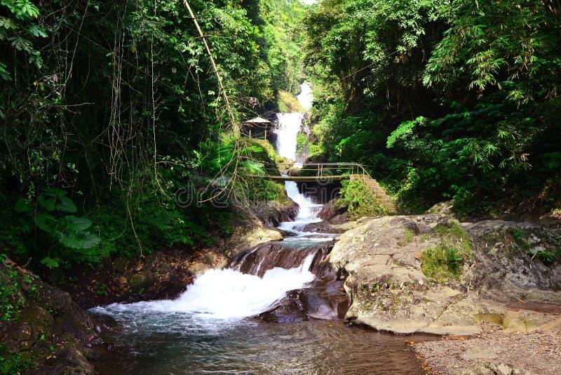 Изумительный ландшафт водопада Git Git стоковое фото