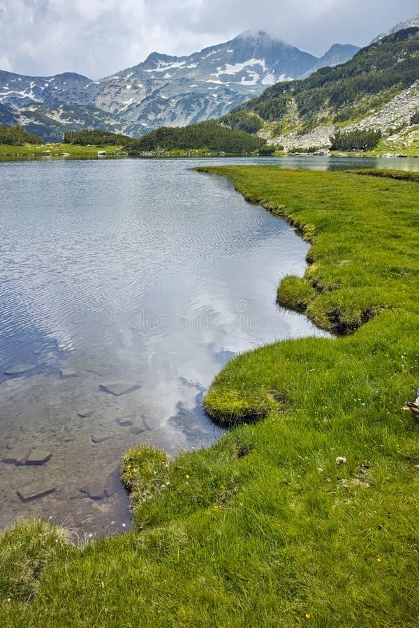 Изумительный взгляд зеленых лугов вокруг озера Muratovo, горы Pirin стоковые изображения rf