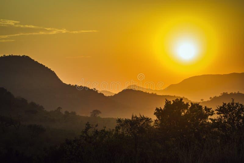 Изумительный заход солнца в национальном парке Kruger, Южной Африке стоковая фотография