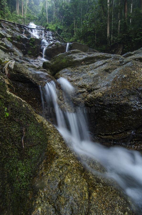 изумляя каскадируя тропический водопад влажный и мшистый утес, окруженный зеленым дождевым лесом стоковое изображение