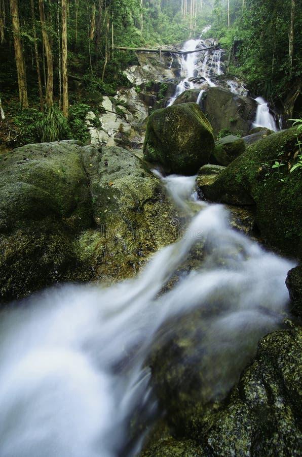 изумляя каскадируя тропический водопад влажный и мшистый утес, окруженный зеленым дождевым лесом стоковые фото