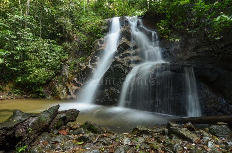 изумляя каскадируя тропический водопад влажный и мшистый утес, окруженный зеленым дождевым лесом стоковое фото