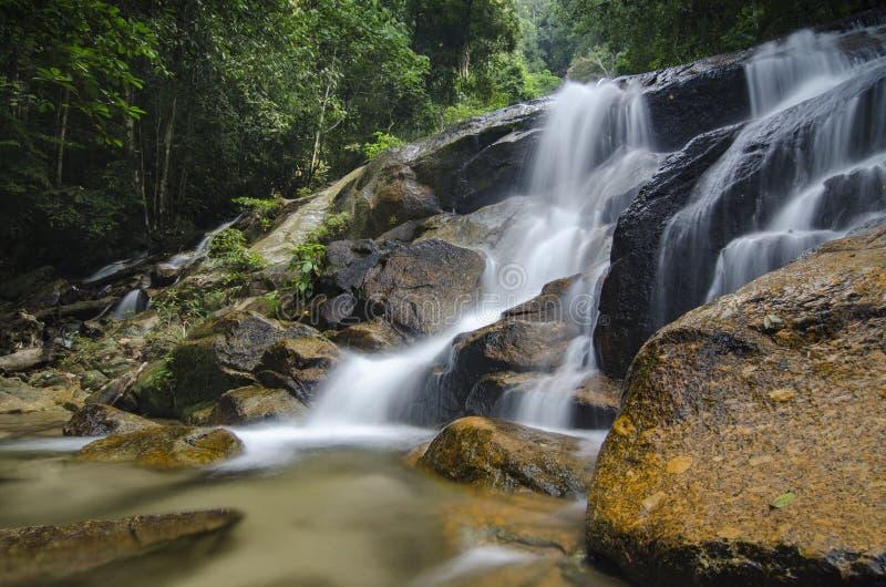 изумляя каскадируя тропический водопад влажный и мшистый утес, окруженный зеленым дождевым лесом стоковое изображение rf