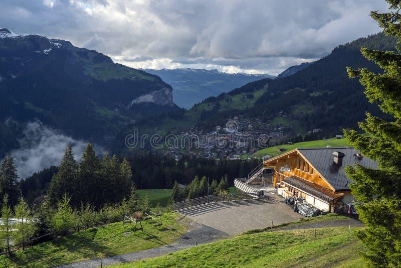 Изумляя местность ландшафта вдоль железнодорожного пути в регионе Jungfrau, Швейцарии стоковые фотографии rf