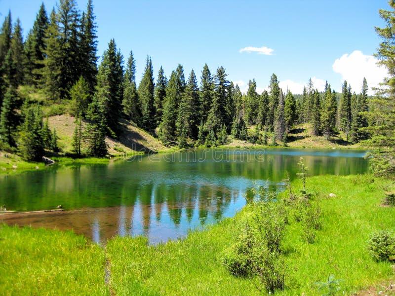 Изумрудно-зеленое озеро высокая гор стоковые фото