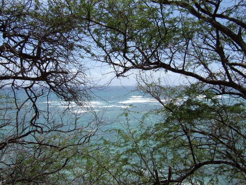 Изумрудный парк штата залива в южном Лаке Таюое & Stateline стоковая фотография