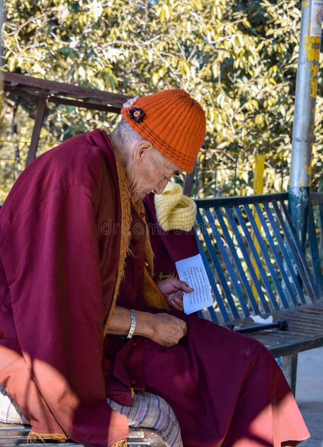 Изучать монаха мирный стоковое изображение rf