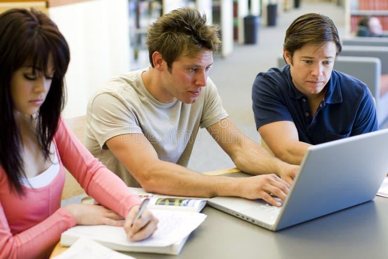 изучать студентов стоковое изображение rf