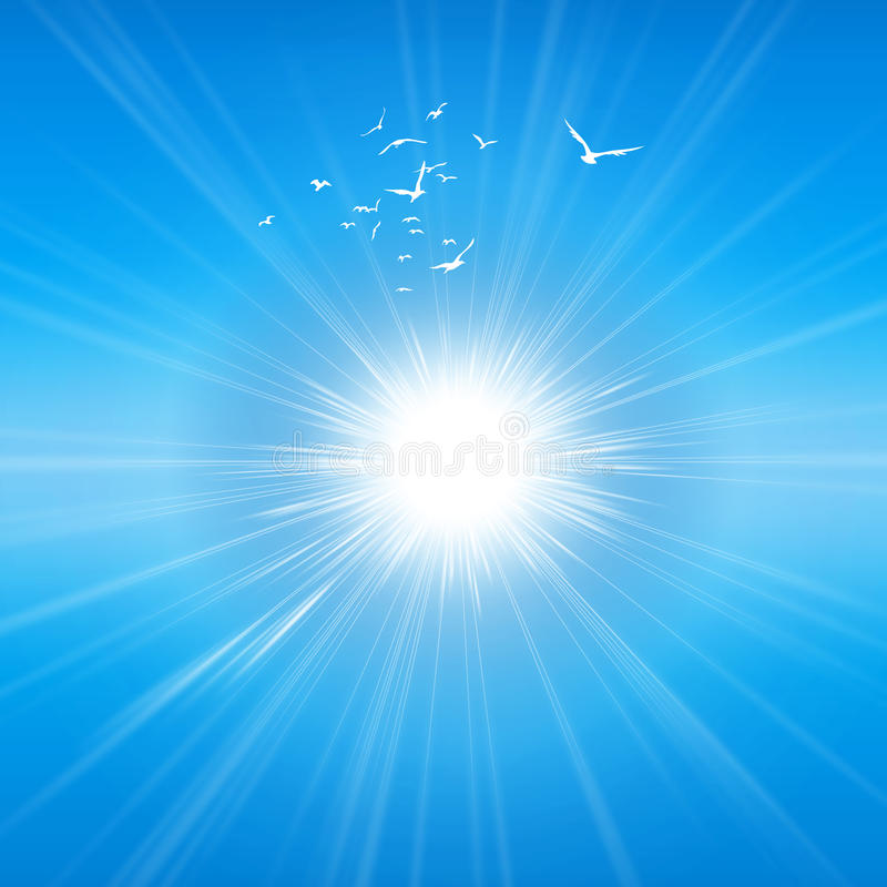 Излучающая солнечность бесплатная иллюстрация