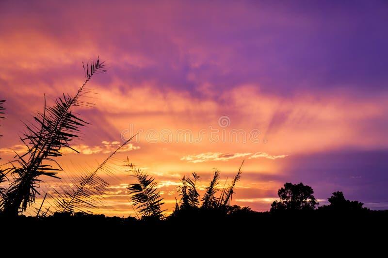 Излучающий заход солнца стоковая фотография