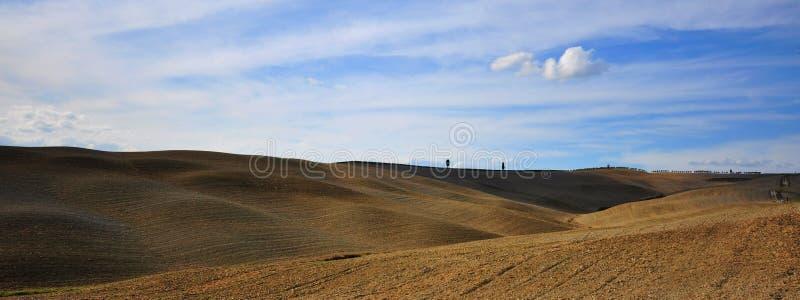 Иконическая Тоскана fields с ясным небом, Италией стоковое изображение