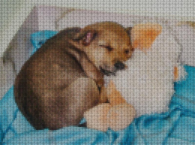 иллюстрации Вышивка крестиком Желтая собака иллюстрация вектора