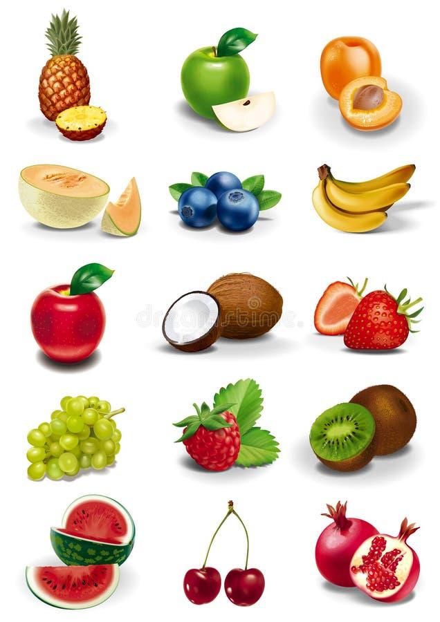 Иллюстрации плодоовощей и ягод иллюстрация вектора