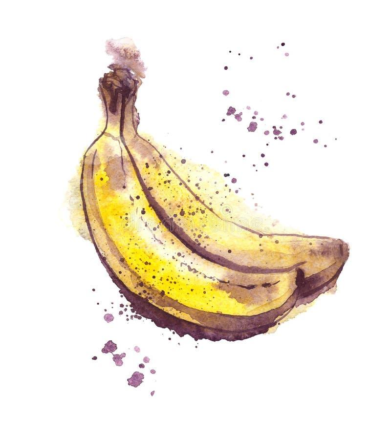 Иллюстрация акварели пар банана, зрелые бананы, стиль акварели влажный стоковое фото