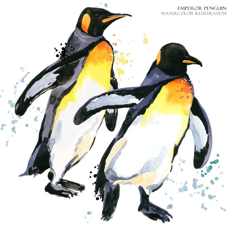 Иллюстрация акварели пингвина императора установленная иллюстрация вектора