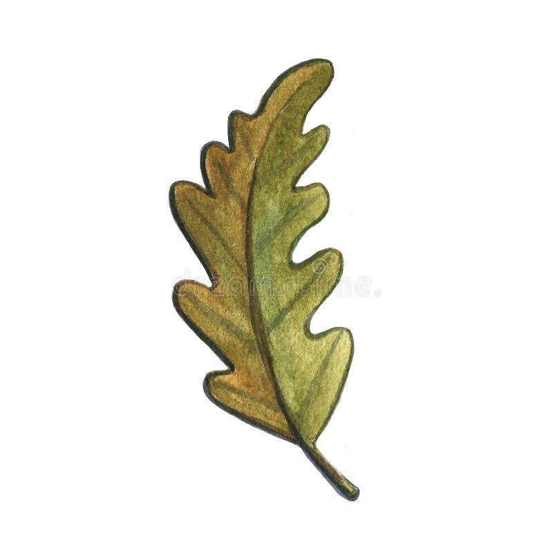 Иллюстрация акварели руки вычерченная гриба жолудя лист на белой предпосылке Погода падения осени E стоковые изображения rf