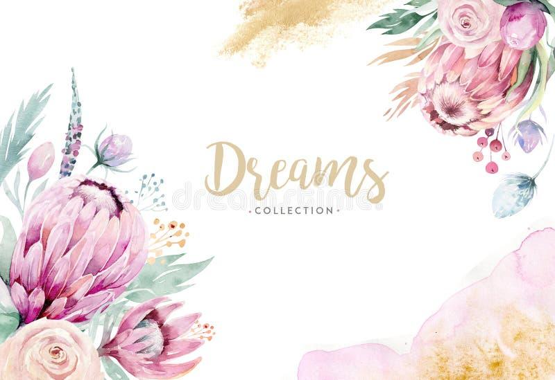 Иллюстрация акварели руки изолированная чертежом флористическая с розой, листьями, ветвями и цветками protea Богемское золото иллюстрация штока