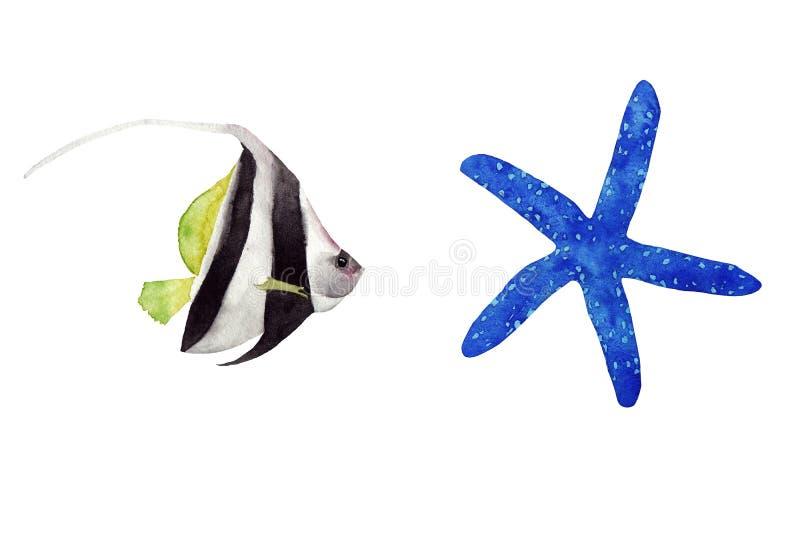 Иллюстрация акварели установила красочных ярких тропических striped рыб и морские звёзды изолировали на белой предпосылке бесплатная иллюстрация