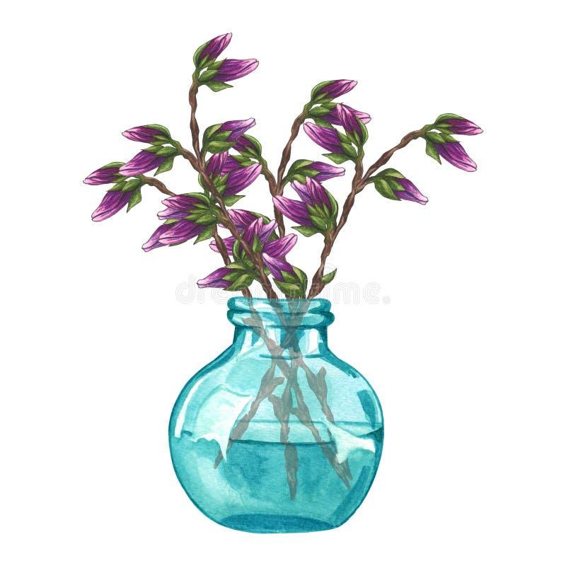 Иллюстрация акварели хворостины со свежей розовой магнолией отпочковывается цветки в вазе изолированной на белой предпосылке бесплатная иллюстрация