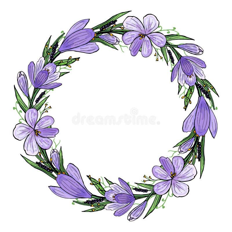 Иллюстрация вектора венка крокуса с гиацинтом и травами Нарисованная вручную рамка весны фиолетовых и желтых цветков и зеленого ц иллюстрация штока