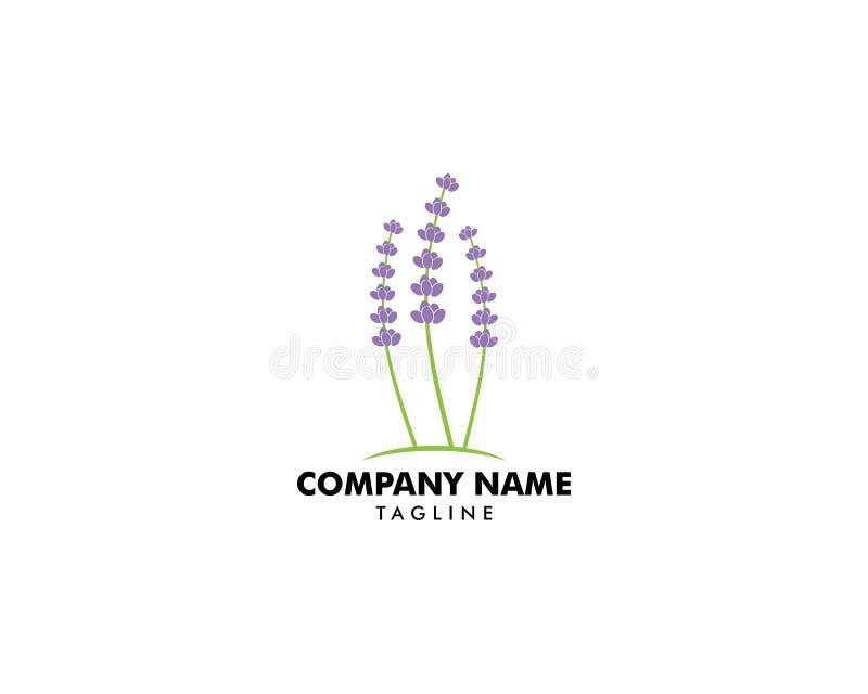 Иллюстрация вектора дизайна логотипа шаблона лаванды иллюстрация штока