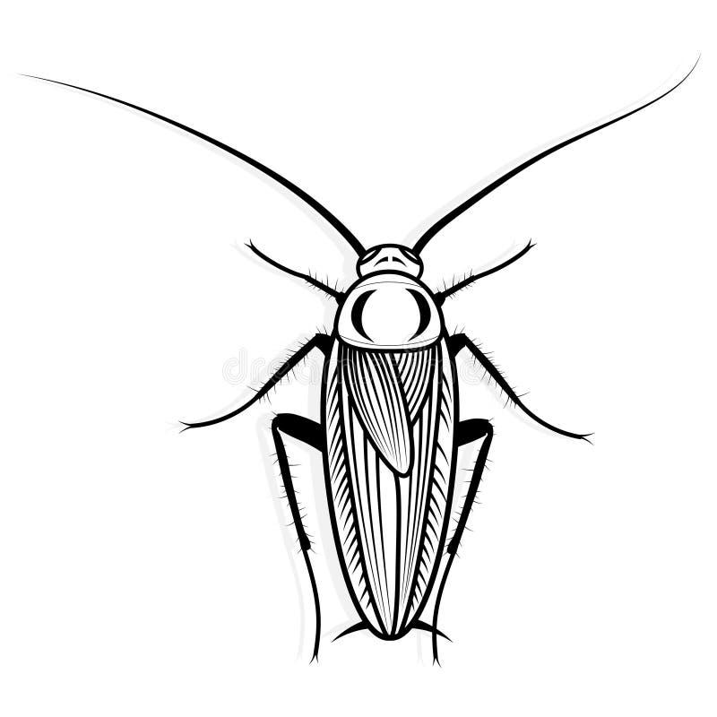 Иллюстрация вектора дизайна вектора таракана животная для футболки Дизайн татуировки эскиза бесплатная иллюстрация