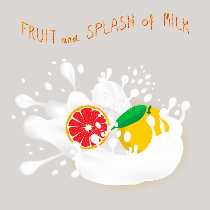 Иллюстрация вектора для зрелого грейпфрута красного цвета плодоовощ иллюстрация вектора