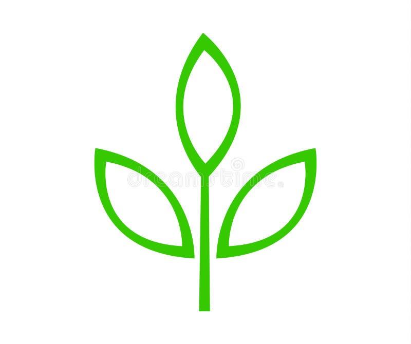 Иллюстрация вектора зеленого логотипа лист иллюстрация вектора