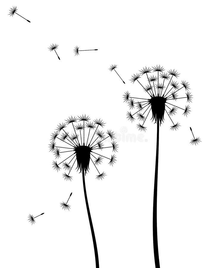 Иллюстрация вектора изолированного силуэта одуванчиков с семенами летания бесплатная иллюстрация