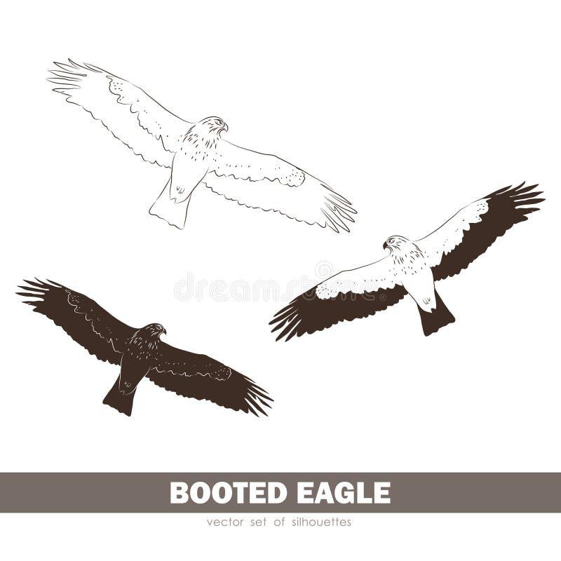 Иллюстрация вектора: Комплект силуэтов Booted орел в мухе бесплатная иллюстрация