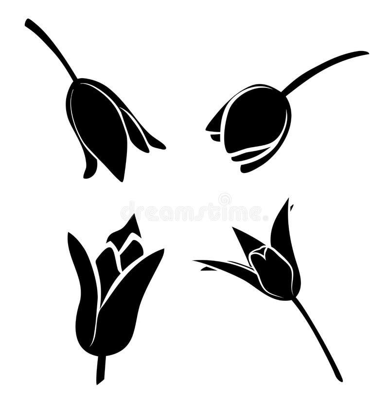 Иллюстрация вектора, комплект цветков тюльпана иллюстрация штока