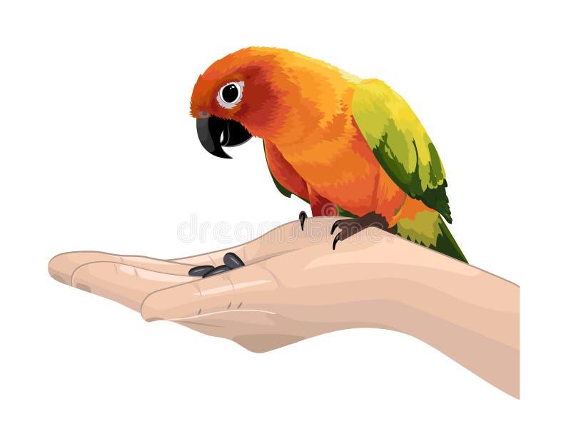 Иллюстрация вектора красочного попугая сидит на руке бесплатная иллюстрация