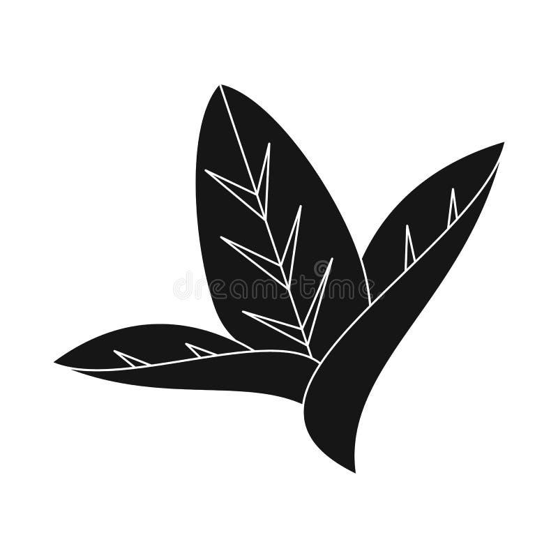 Иллюстрация вектора логотипа лист и листьев Установите лист и ботанического значка вектора для запаса иллюстрация вектора