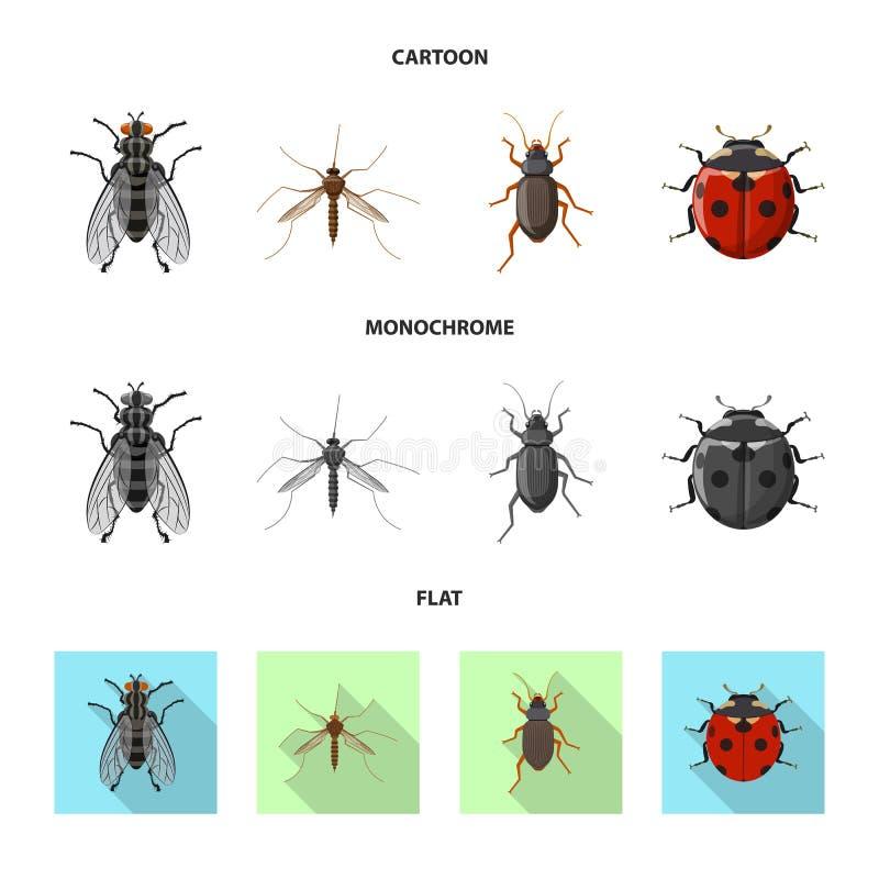 Иллюстрация вектора логотипа насекомого и мухы Собрание значка вектора насекомого и элемента для запаса иллюстрация вектора