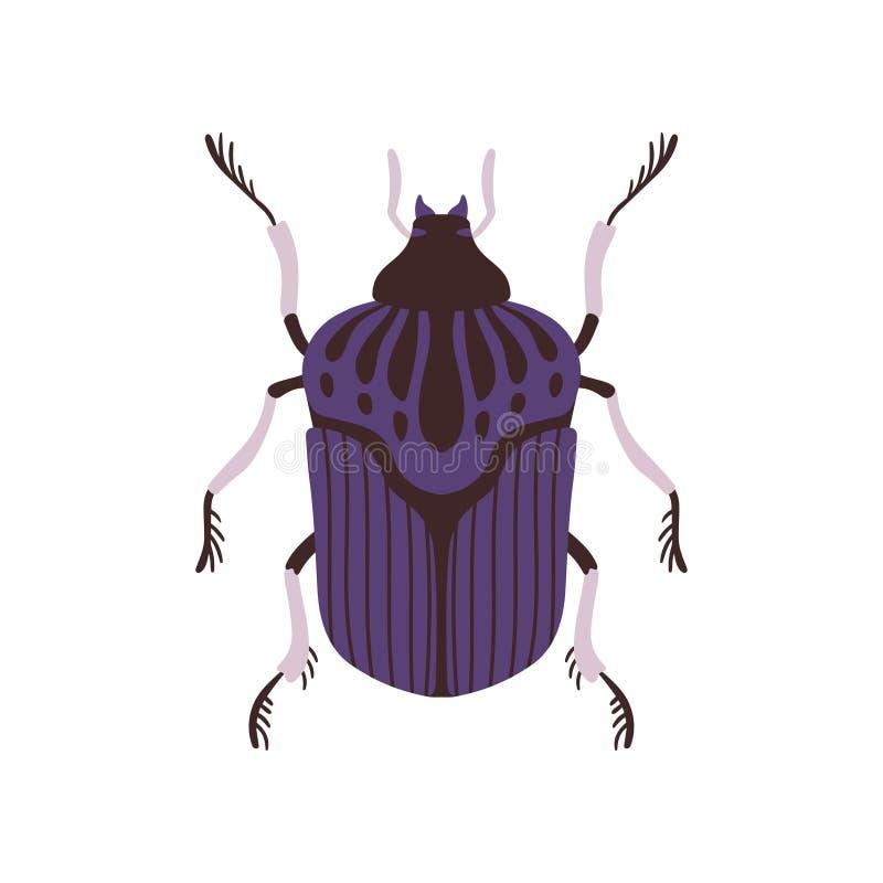 Иллюстрация вектора насекомого жука, голубых и черных ошибки взгляда  иллюстрация вектора