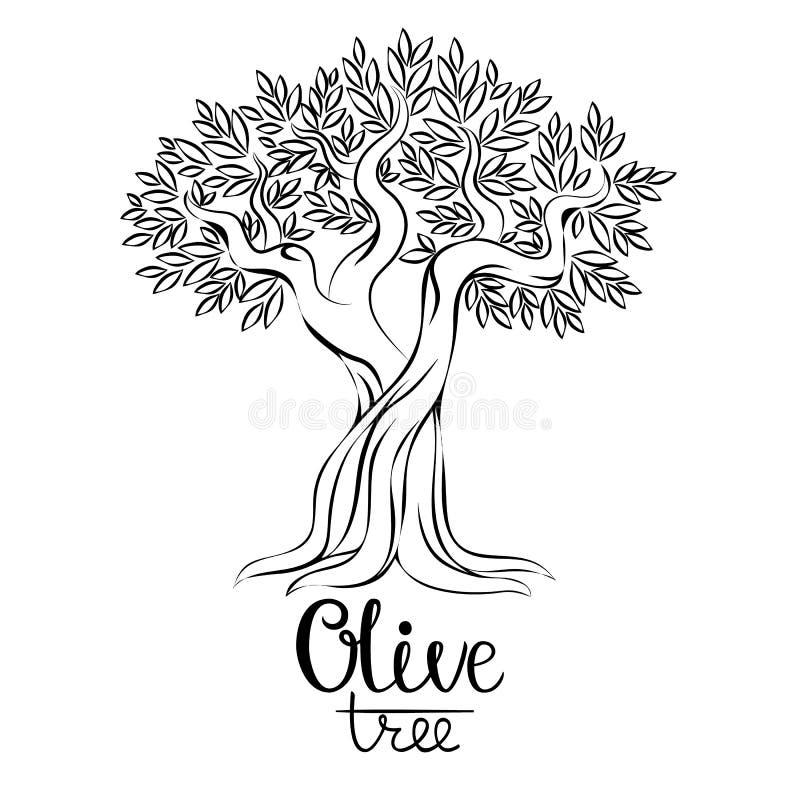 Иллюстрация вектора оливкового дерева красивейшей одетьнные бутылкой специи оливки масла Оливковое дерево для ярлыков, пакет вект иллюстрация вектора