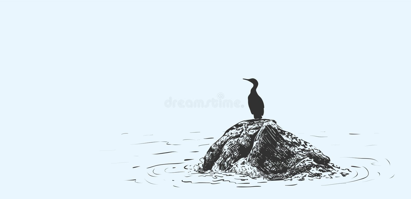 Иллюстрация вектора птицы сидя на камне в море, эскиз сделала вручную бесплатная иллюстрация