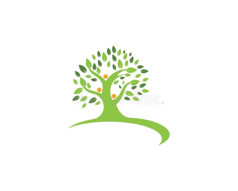 Иллюстрация вектора шаблона логотипа фамильного дерев дерева иллюстрация штока