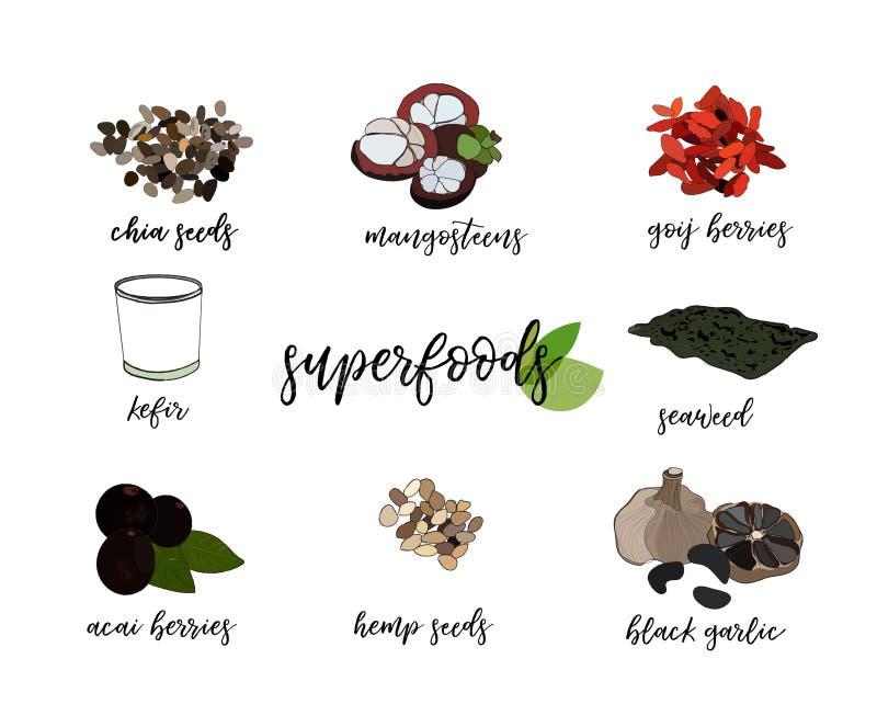 Иллюстрация еды вектора супер органическое здоровое питание иллюстрация штока
