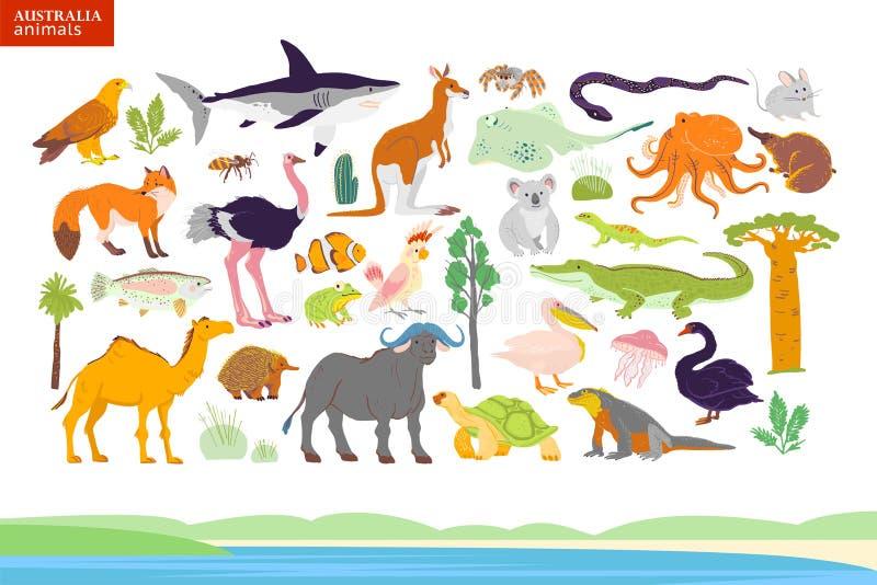 Иллюстрация животных Австралии, взморье вектора плоская, заводы иллюстрация штока