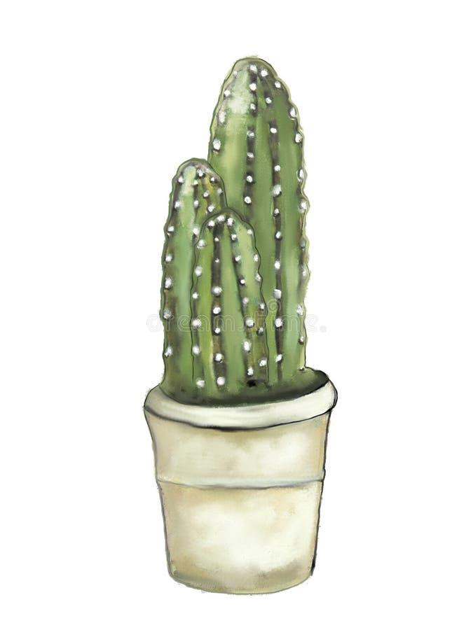 Иллюстрация зеленого кактуса в баке стоковые фотографии rf