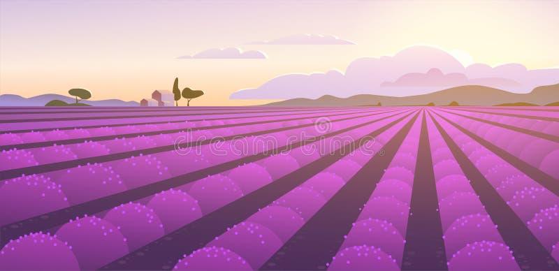 Иллюстрация ландшафта вектора плоская красивого поля лаванды на восходе солнца: небо, горы, уютные дома, лаванда иллюстрация вектора