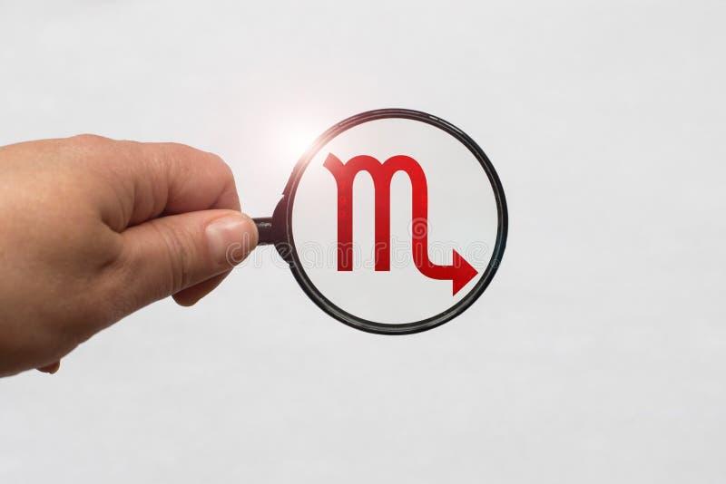 Иллюстрация лупы фокусируя на красном знаке зодиака Scorpio стоковое изображение rf