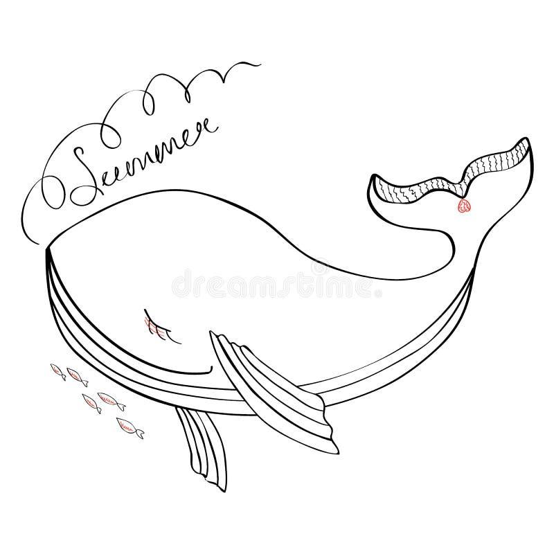 Иллюстрация милого шаржа кита смешная изолированная на белом фоне, животном эскиза чернил doodle векторной графики, характере иллюстрация вектора