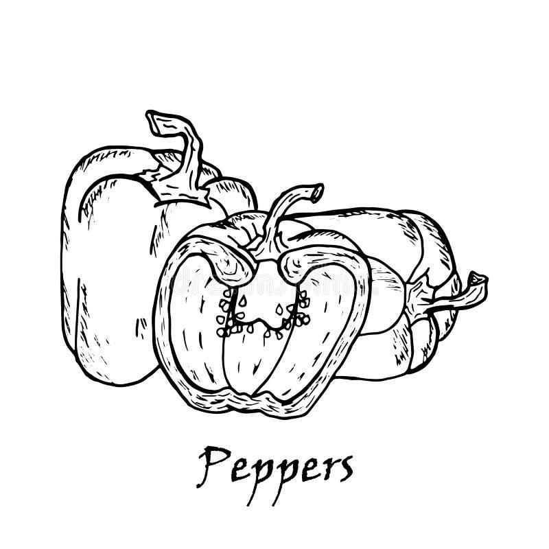 Иллюстрация нарисованная рукой 3 перцев бесплатная иллюстрация